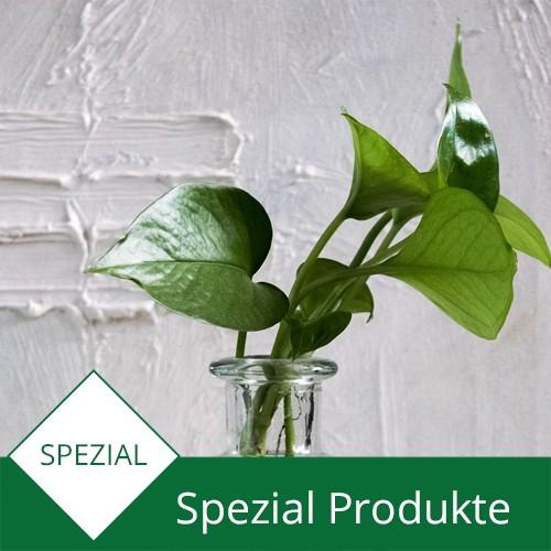 Spezial Produkte